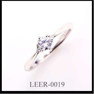 LEER-0019